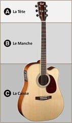 Anatomie guitare accoustique